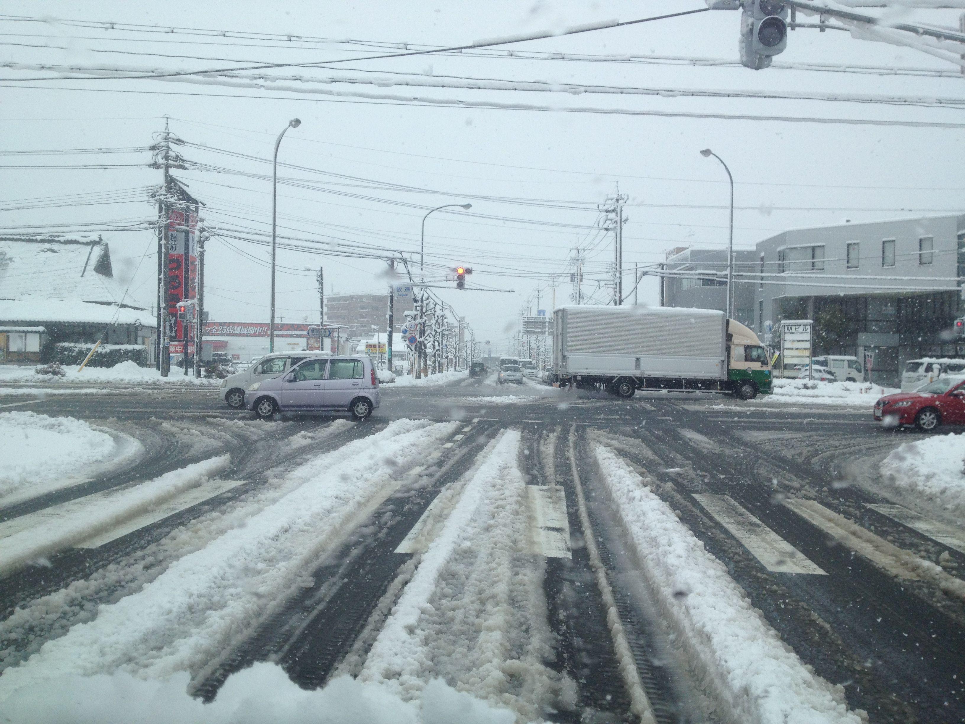 福井市内には10cmほどの雪が降りました。
